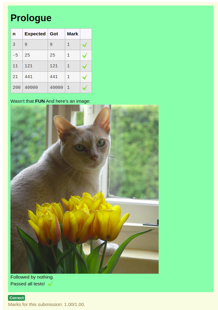 Combinator grader output with cat image
